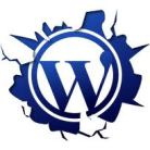 WordPress Development Services us